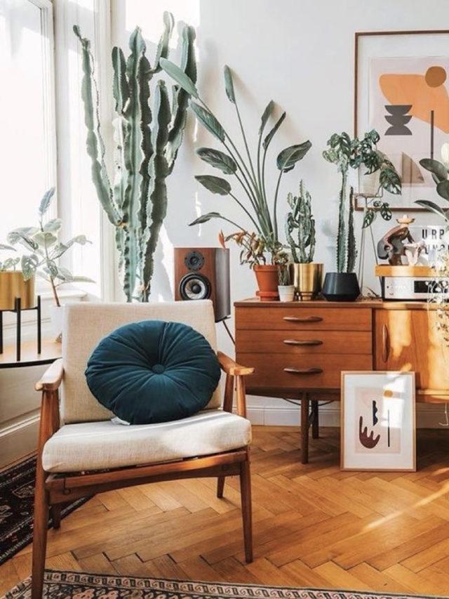 fauteuil annees 50 enfilade rétro plantes et cactus