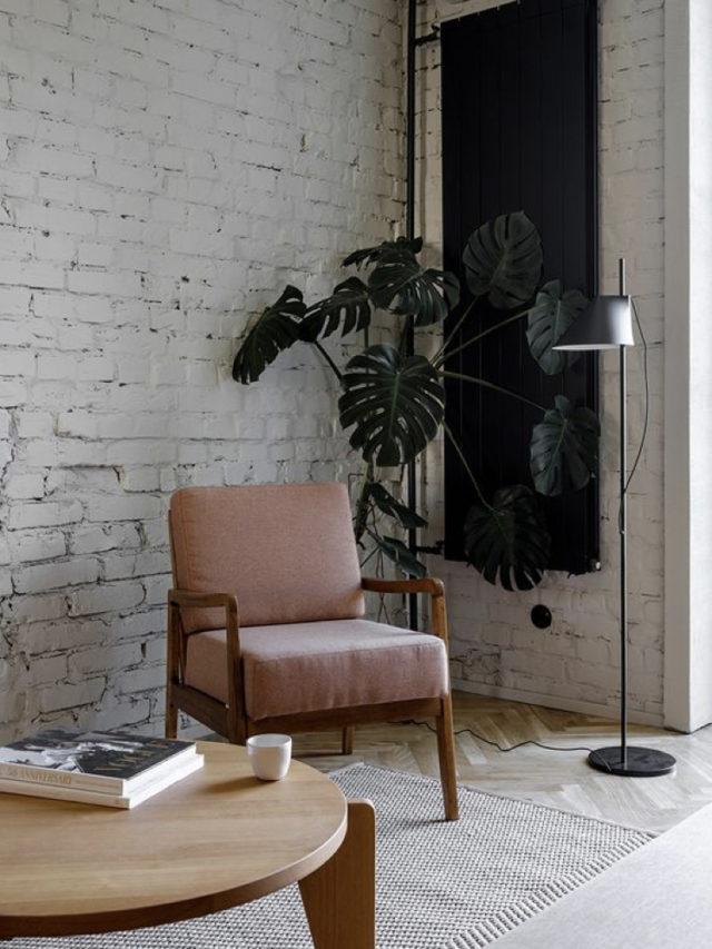 fauteuil annees 50 plante monstera