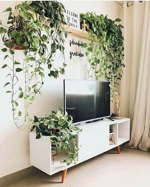salon blanc style urban jungle exemple meuble tv et plantes