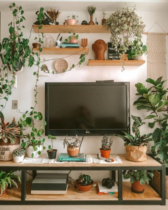 salon blanc style urban jungle exemple etagere plante