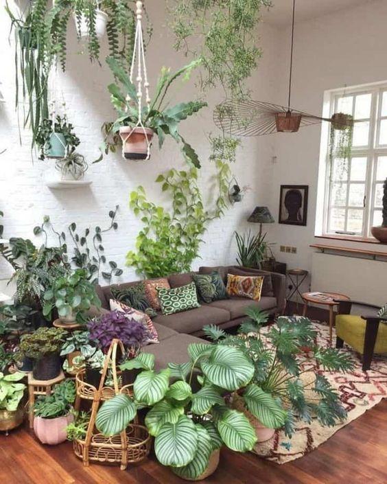 salon blanc style urban jungle exemple plantes vertes