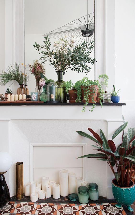 style classique chic cheminee plante