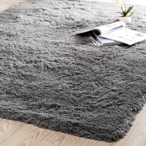 salon cosy tapis exemple gris douceur