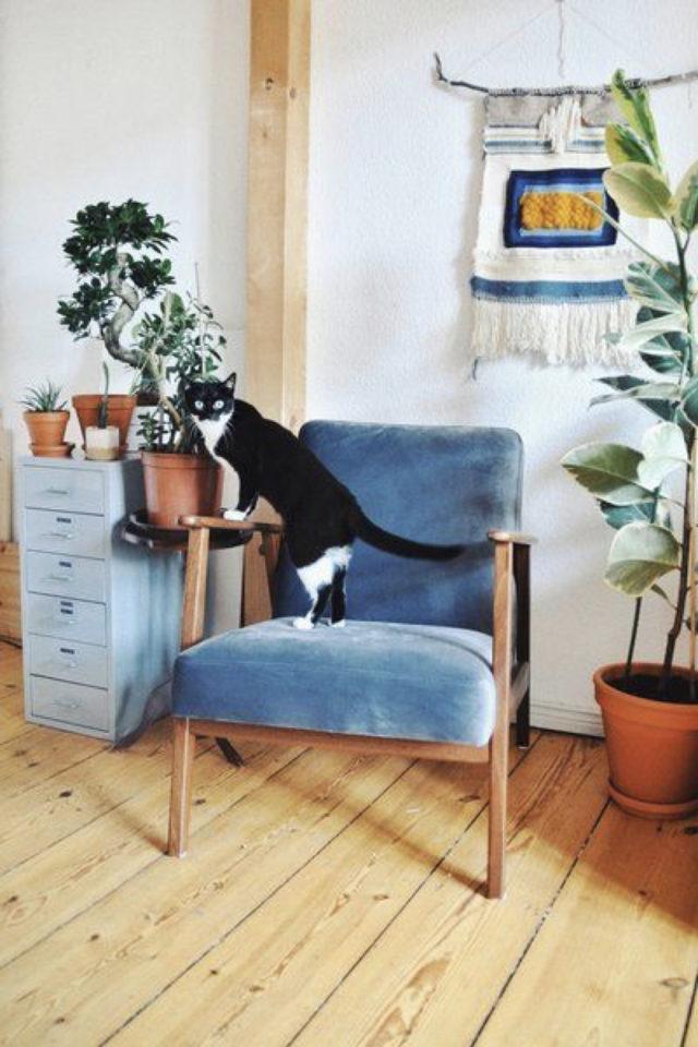 des chats et de la déco plantes vertes fauteuil style mid century