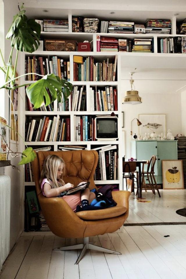 exemple amenagement coin lecture salon bibliothèque et fauteuil design en cuir