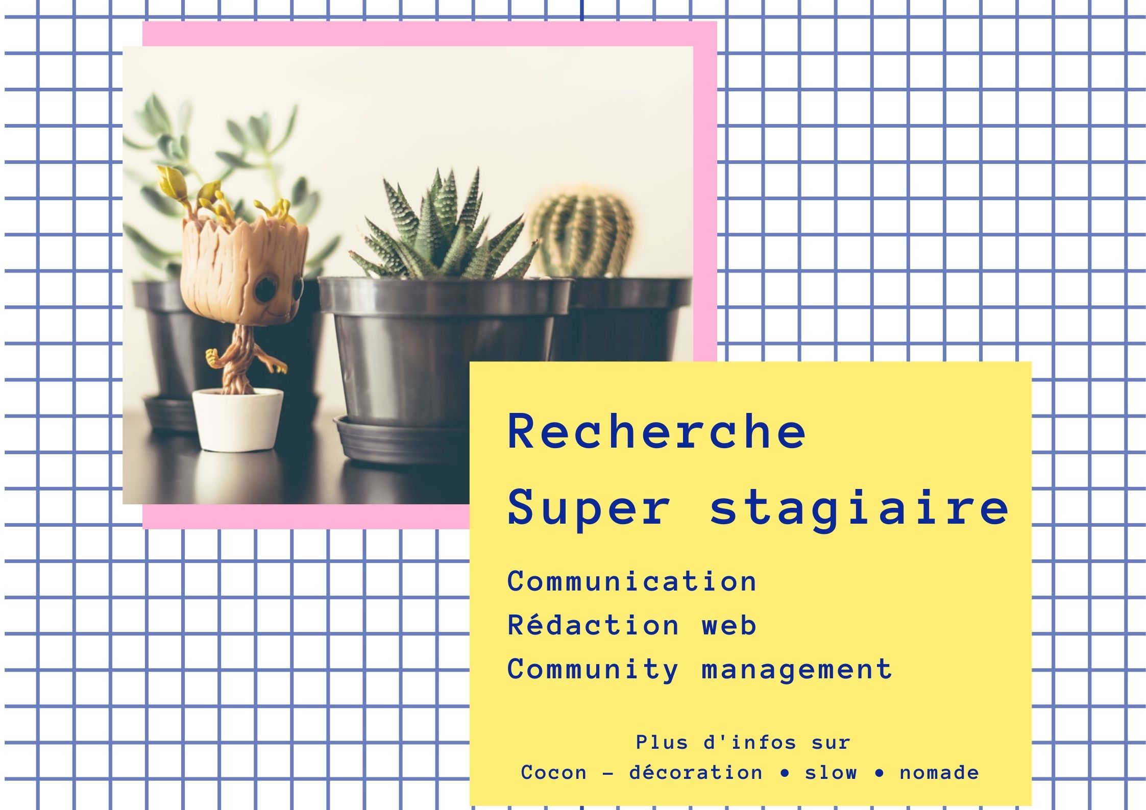 offre stage communication