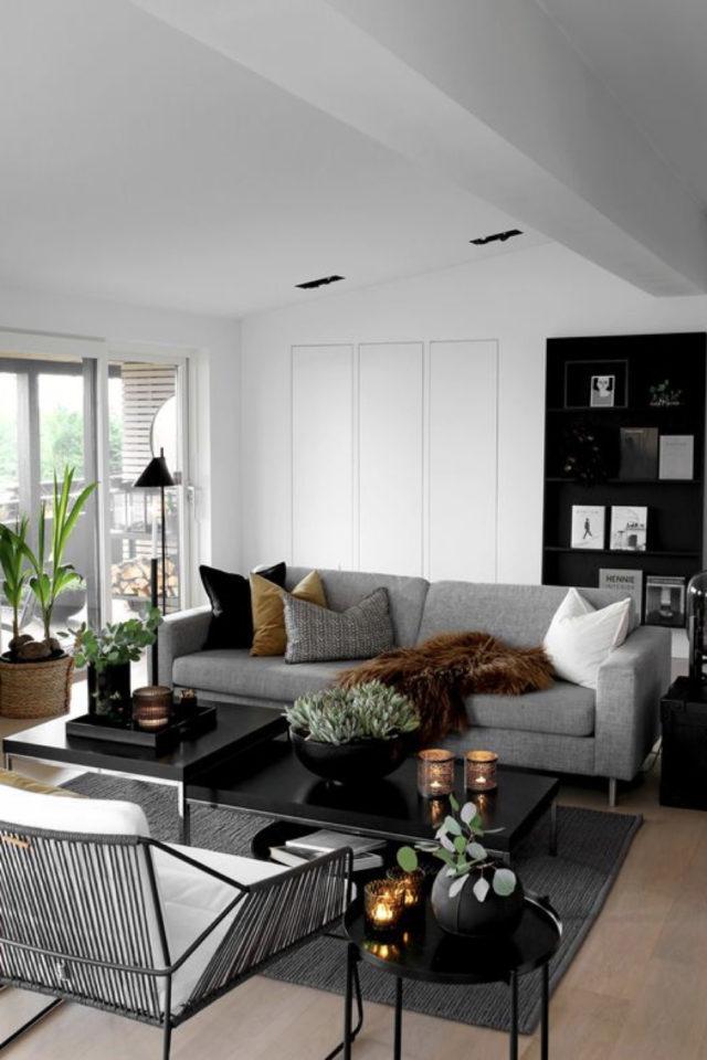 salon gris ambiance moderne exemple canapé contemporain peinture blanche
