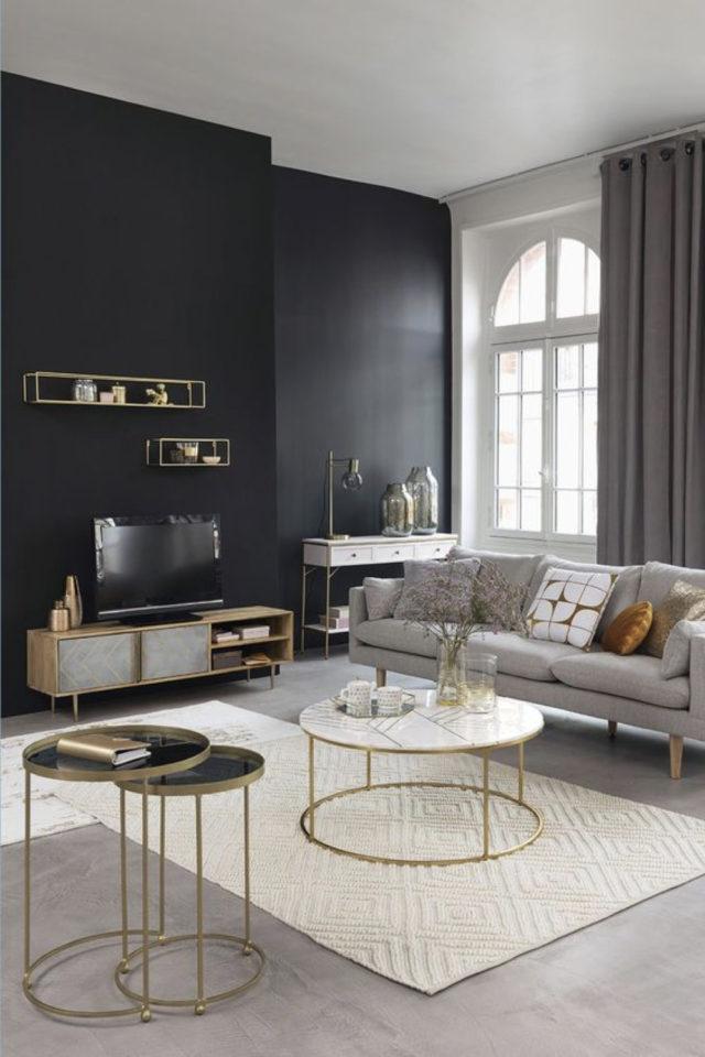 salon gris ambiance moderne exemple peinture sombre ambiance luminosité