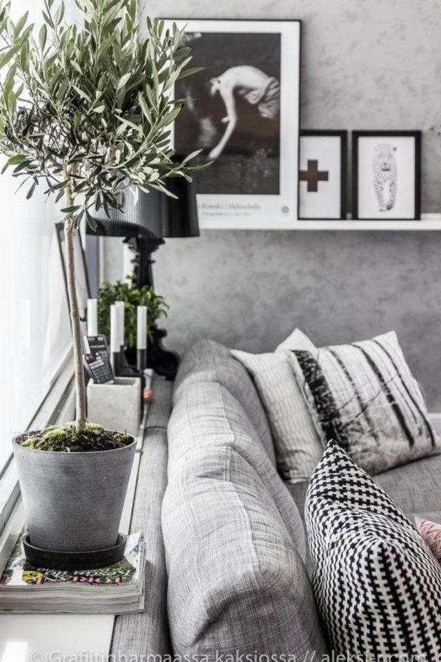 salon moderne gris blanc plantes intérieures mur béton ciré ambiance moderne avec plantes