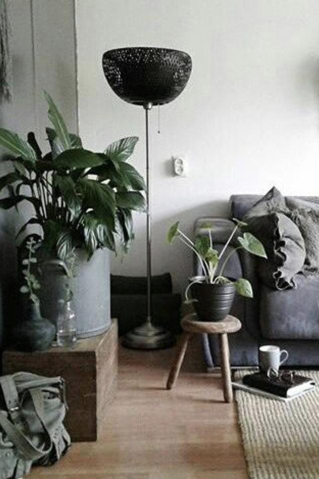 salon moderne gris blanc plantes intérieures urban jungle