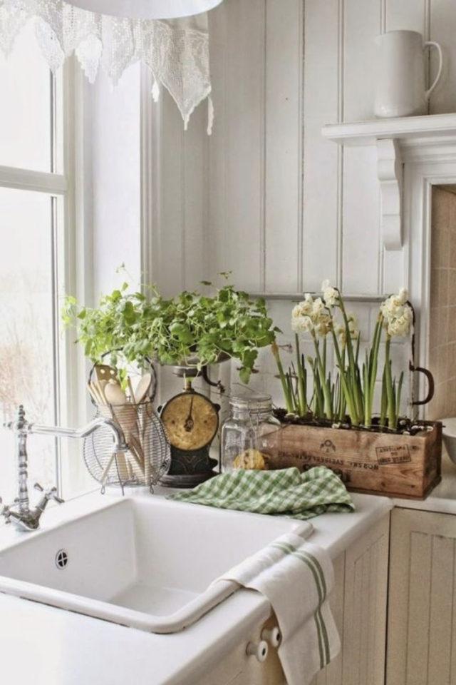 cuisine style classique chic exemple évier plante fleur nature