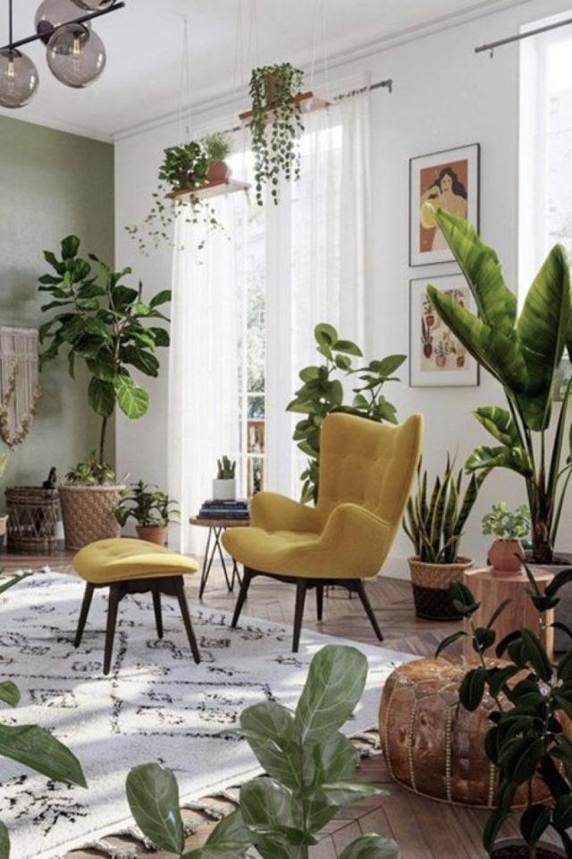 petit budget fauteuil deco 2 salon moderne plantes vertes couleurs