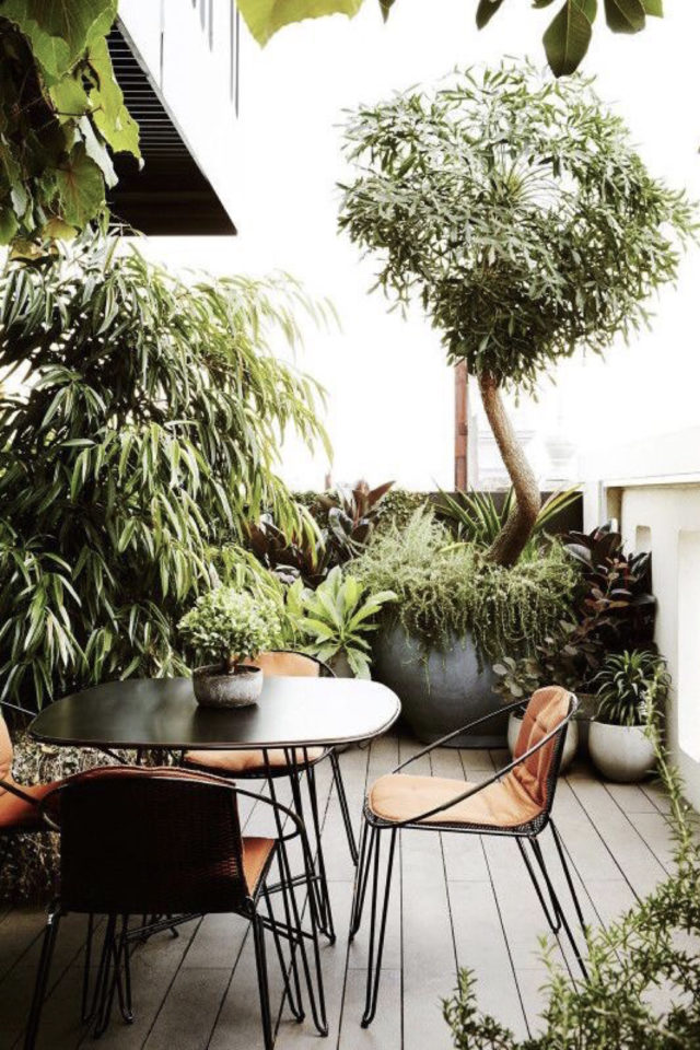 amenager toit immeuble jardin terrasse rooftop table chaise plantes tropicales