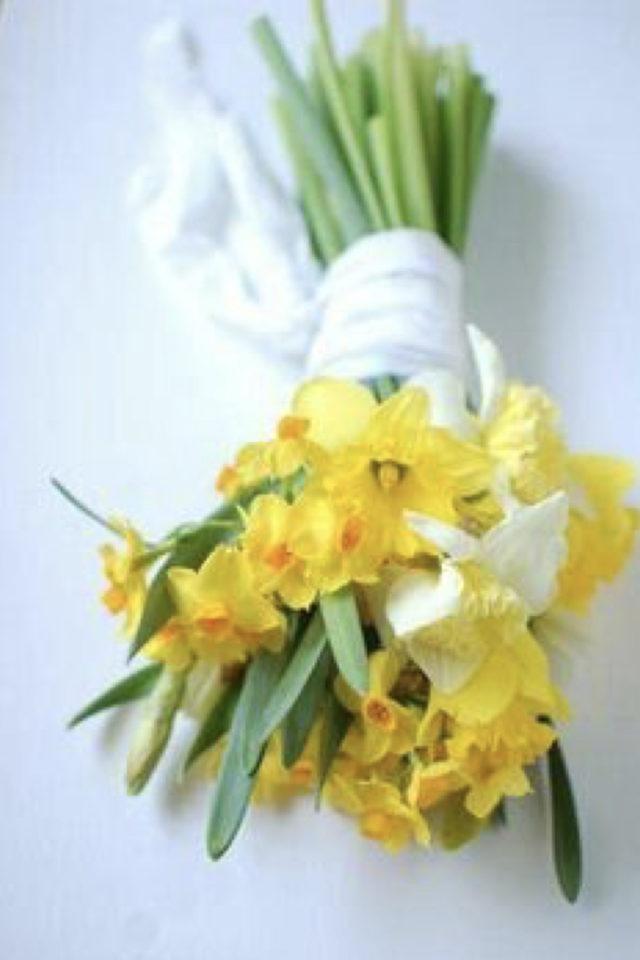 bouquet jonquille printemps decoration fleur coupée ruban en coton