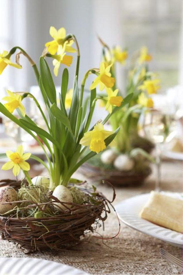 bouquet jonquille printemps decoration centre de table naturel petit eouf deco pâque