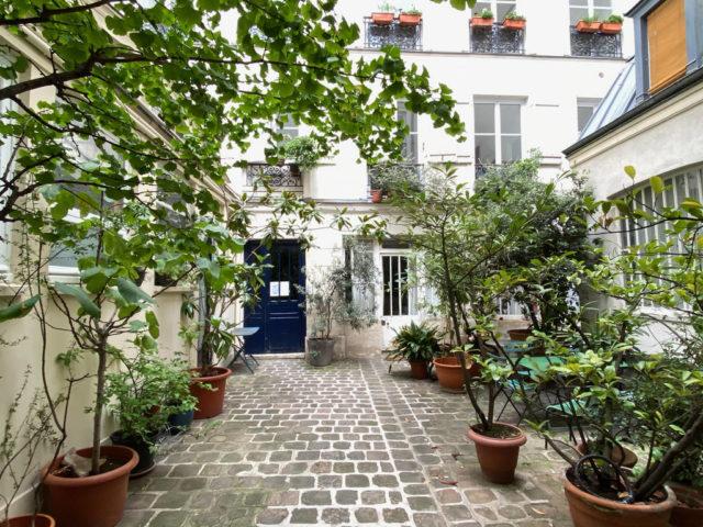 cour interieure immeuble plantes appartement parisien plantes pot de fleurs allée