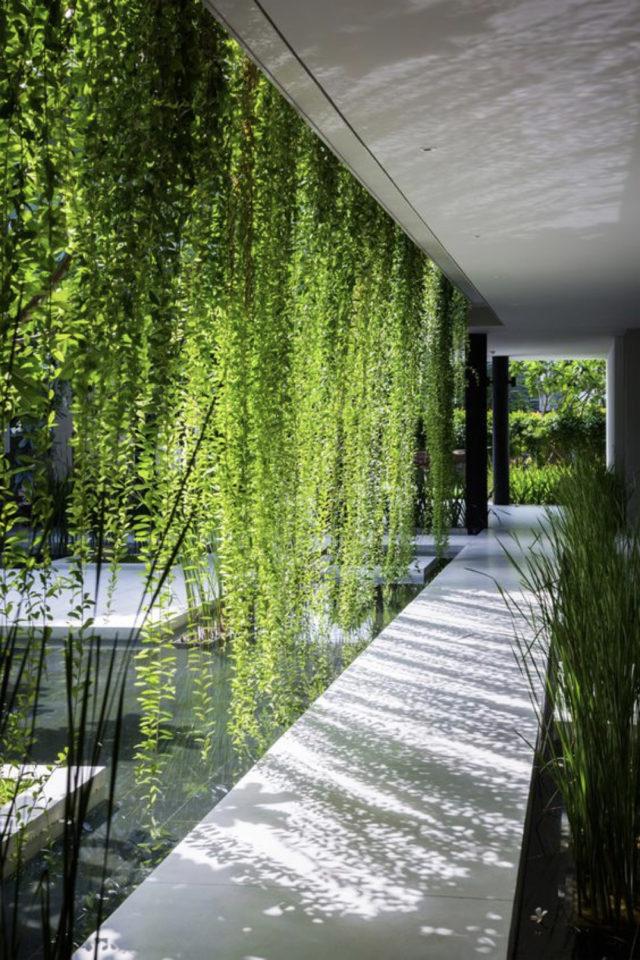 coursive immeuble plantes exemple architecture plantes végétalisation