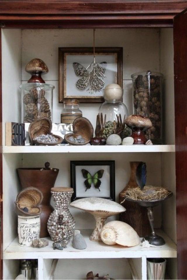 deco rock cabinet curiosite exemple petit meuble étagère collection naturelle
