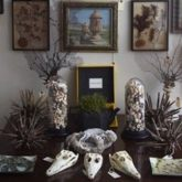 decoration style rock cabinet curiosite conseils exemple idee deco originale