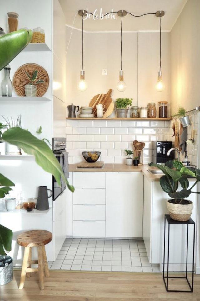 exemple choix couleur petite cuisine blanc moderne féminin lumière plantes
