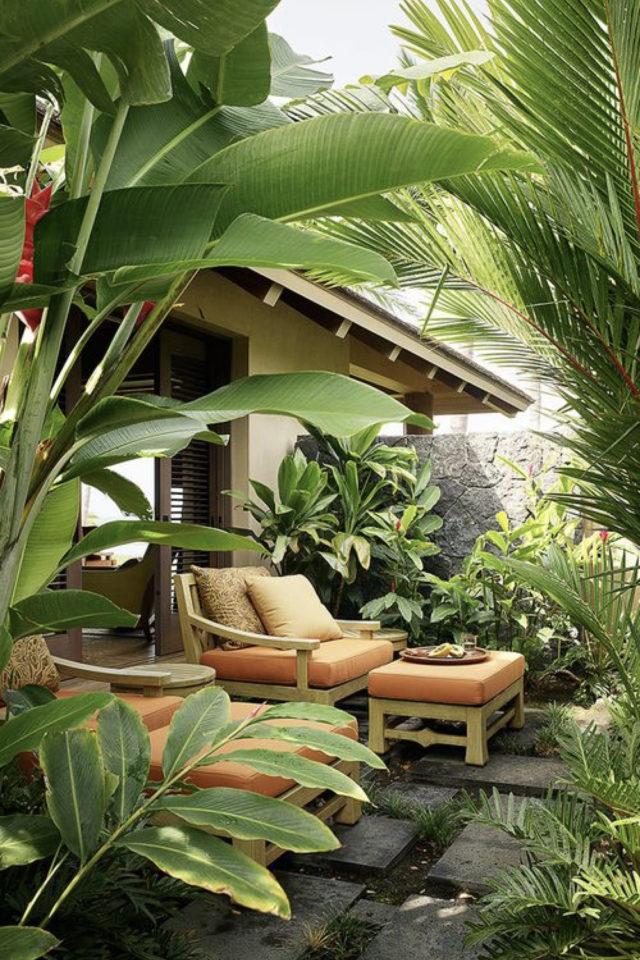 jardin tropical exemple salon extérieur bien être tranquillité calme plantes exotiques