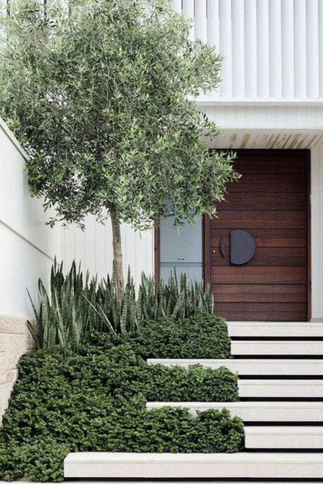 palier immeuble plantes vertes exemple exemple plantes et arbustes entrée escaliers