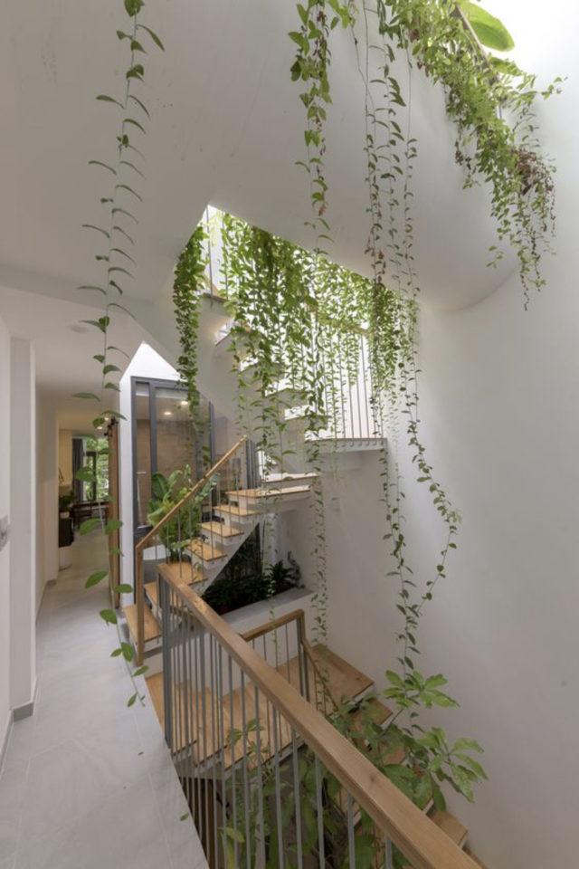 palier immeuble plantes vertes exemple cage escaliers plantes vertes tombantes