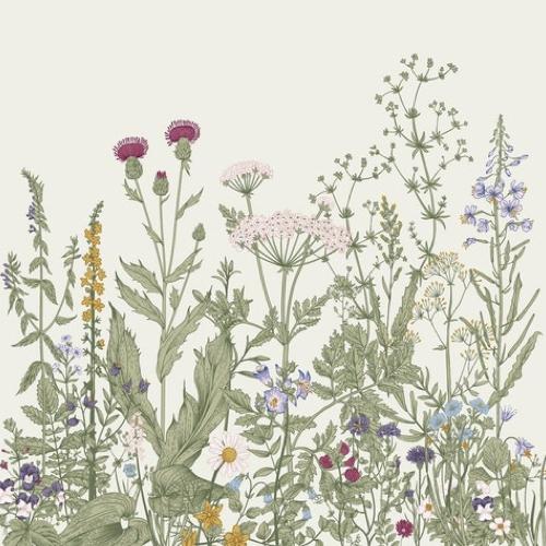 petite piece papier peint idee motif végétal fleur sur fond clair