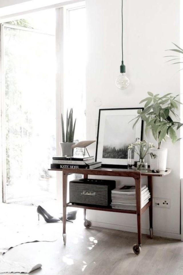 salon decoration style masculin exemple console bois platine vinyle rangement ampli enceinte
