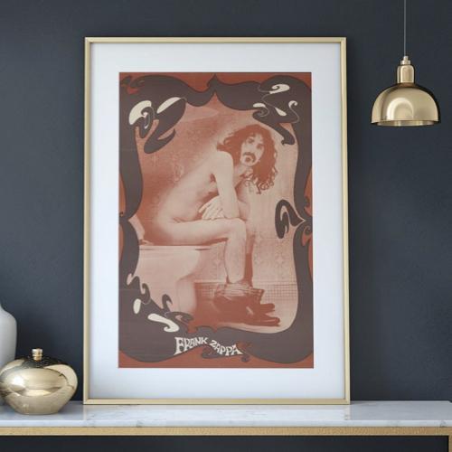 decoration affiche poster musique rock photo franck zappa sur les toilettes
