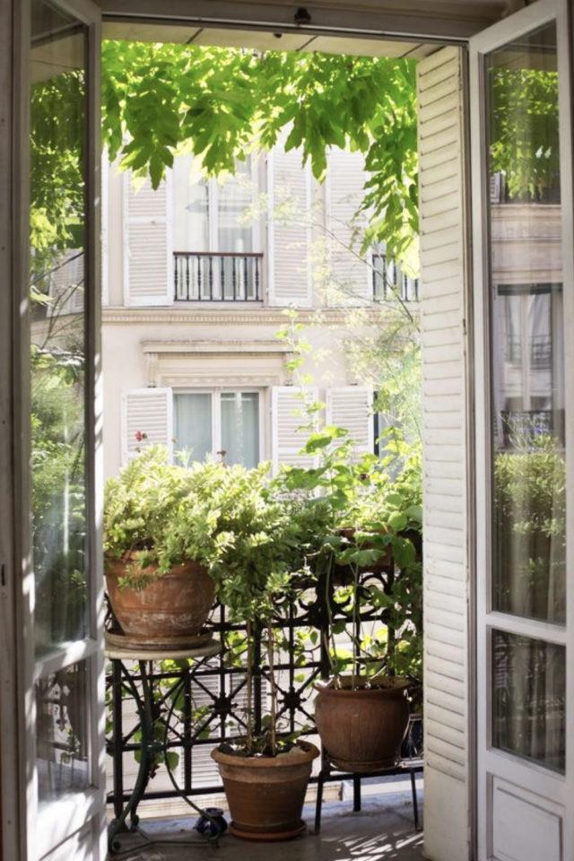decoration balcon verdoyant plantes exemple micro blacon garde-corps en métal ancien pot de fleurs tabouret