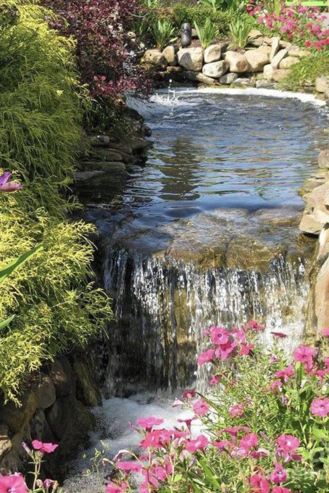 idee  joli jardin fleur rose bassin petite cascade verdoyante