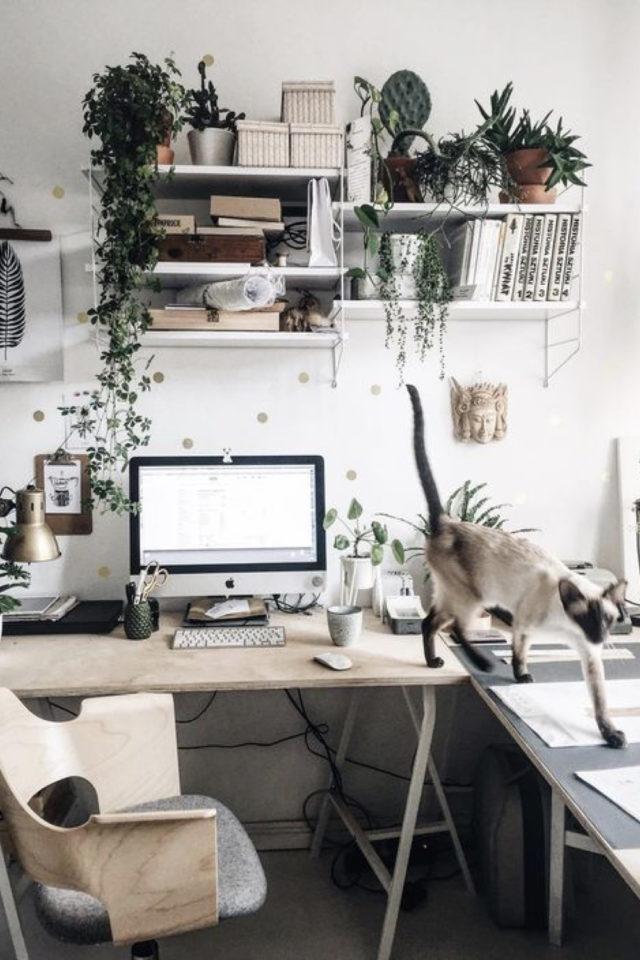 plante verte rampante deco bureau télétravail espace simple plan de travail en bois étagère murale