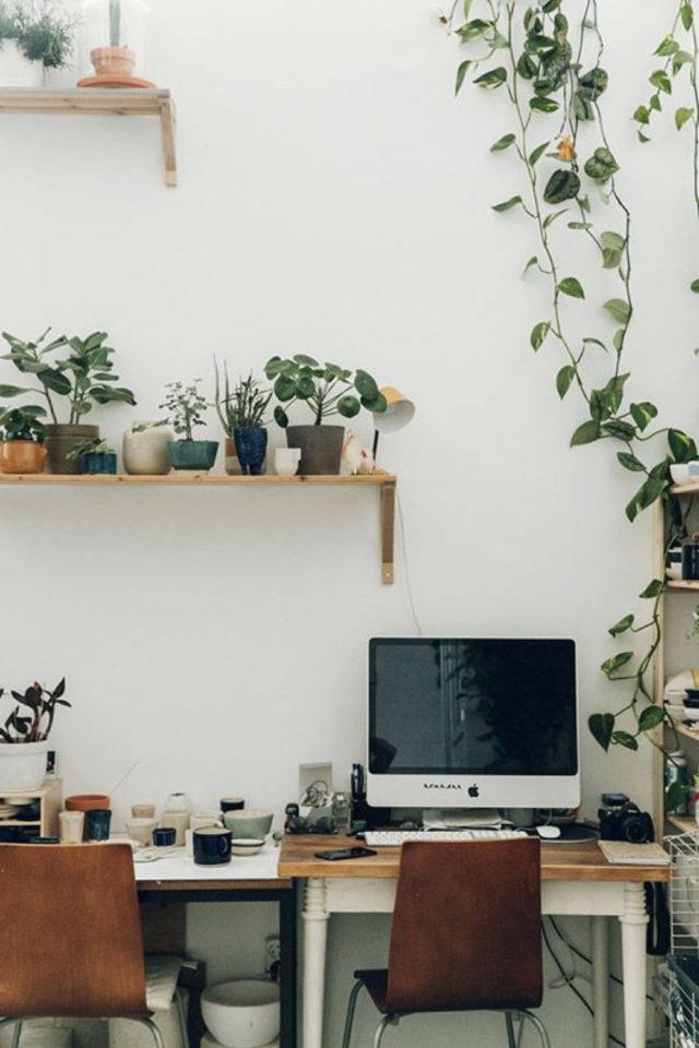 plante verte rampante deco bureau étagère murale mur peinture blanche simplicité télétravail
