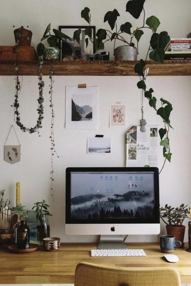 plante verte rampante deco bureau étagère au dessus écran ordinateur télétravail travailler de chez soi cadre agréable