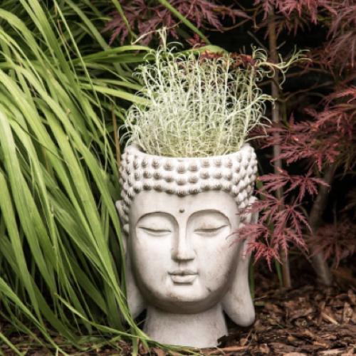 cache pot decoration boheme tête de bouddha blanche craie