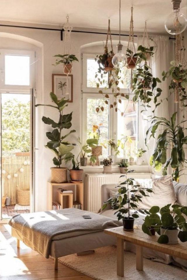 happy small living decoration petit logement petit salon moderne canapé gris lumière naturelle et plantes vertes grande quantité