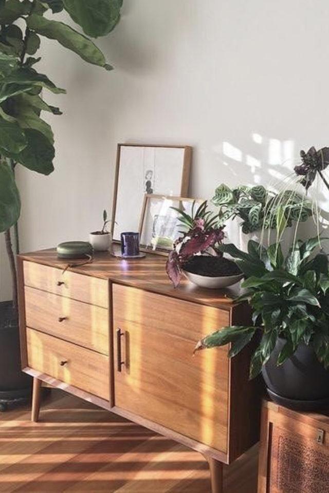 salon sejour vintage exemple petit meuble mid century modern avec plante verte et décoration