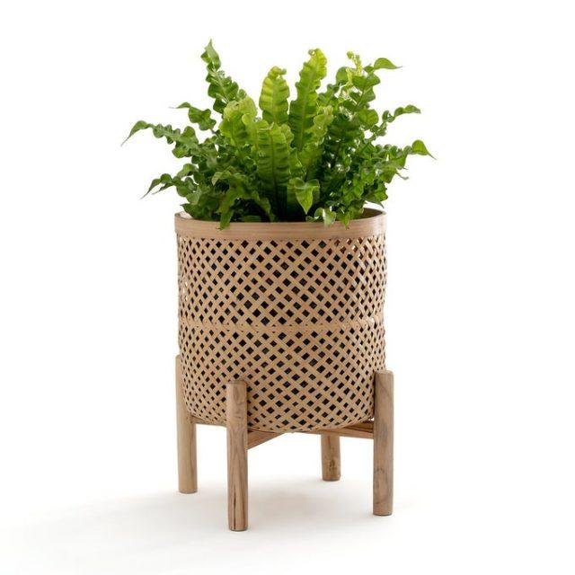 cache pot petite plante verte cannage sur pied moderne tendance