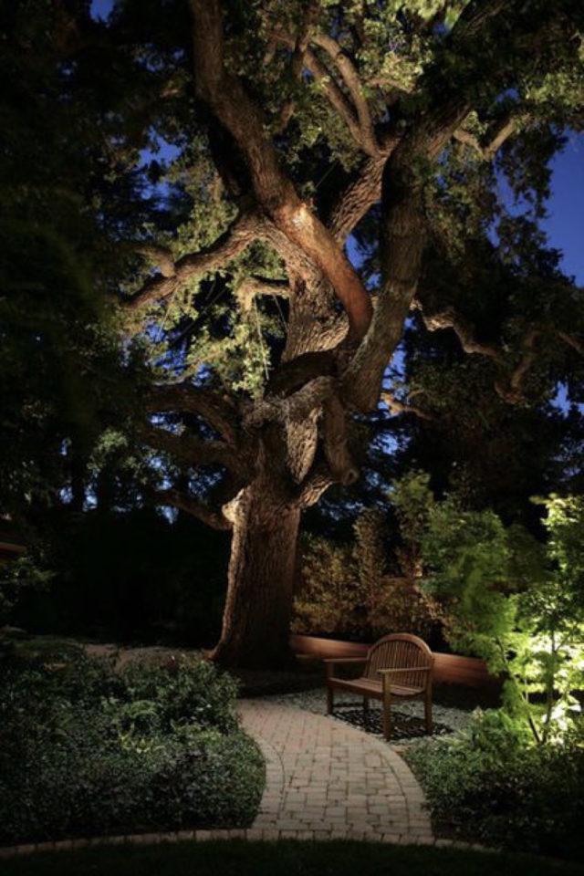 eclairage jardin exemple a copier arbre bosquet lumière indirecte