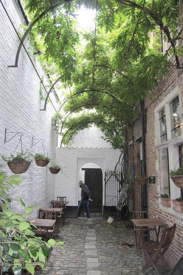 exemple exterieur en longueur jardin pergola verdoyante entre 2 murs
