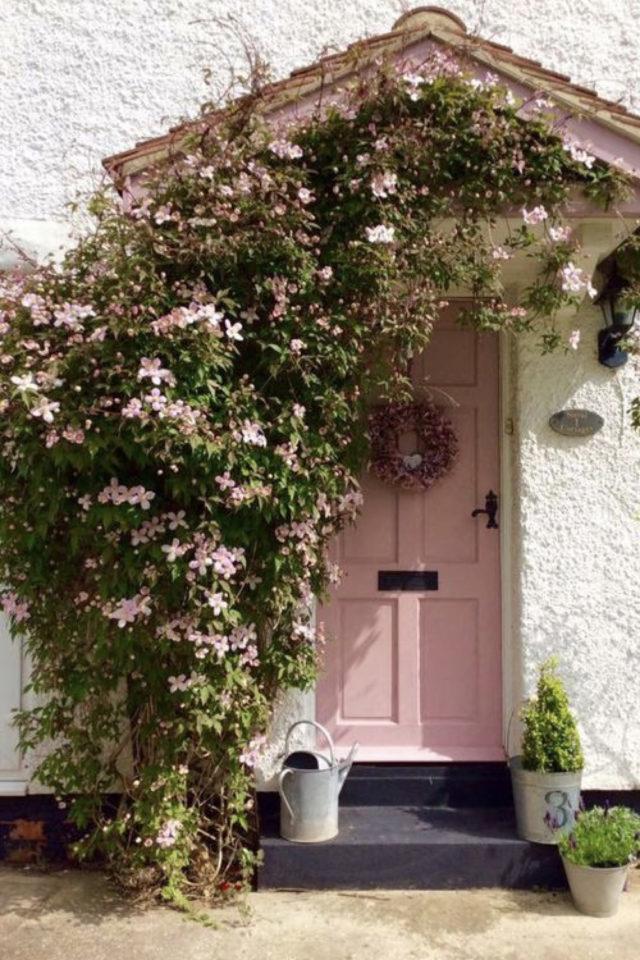porte entree peinture rose exemple jolie extérieur façade plantes fleurs roses