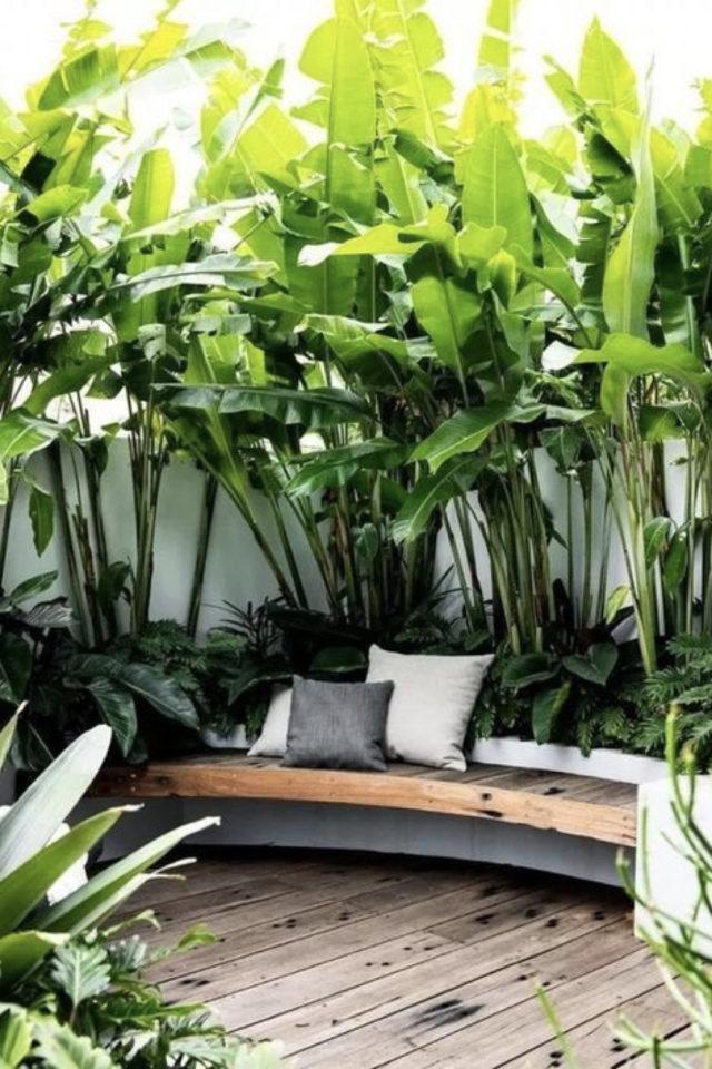 amenagement exterieur banquette confortable jardinière plantes vertes exotique bananier béton bois coussin épuré