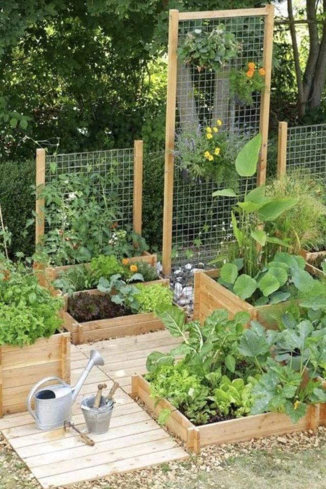 amenagement jardin a faire soi meme petit potager avec treillis plantes légumes
