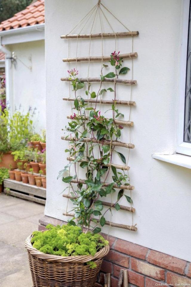 amenagement jardin a faire soi meme DIY treillis facile recup branche d'arbres
