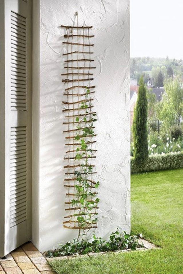 amenagement jardin a faire soi meme treillis façade extérieure à faire soi même
