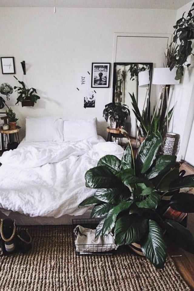 chambre fraicheur plantes exemple style moderne peinture blanche et plante bout du lit
