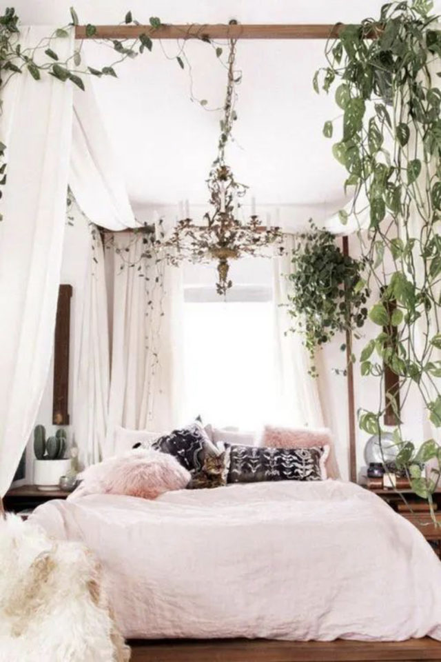 chambre fraicheur plantes exemple plantes suspendues ambiance élégante et lumineuse