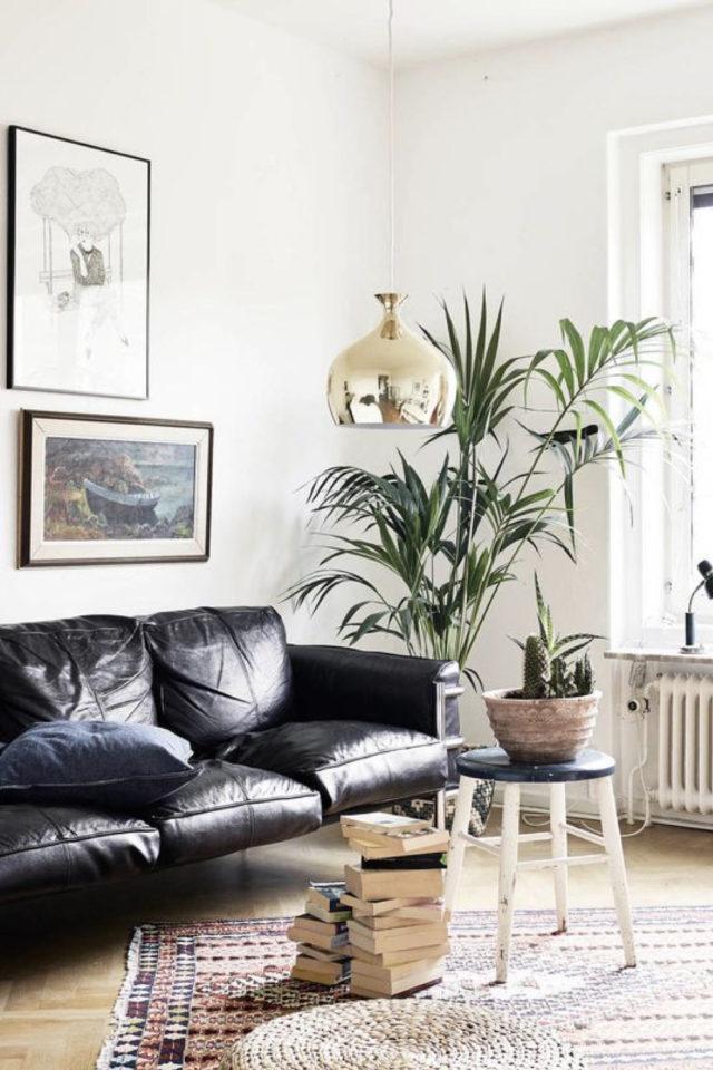 salon canape cuir vintage exemple espace lumineux pièce de vie moderne plantes vertes