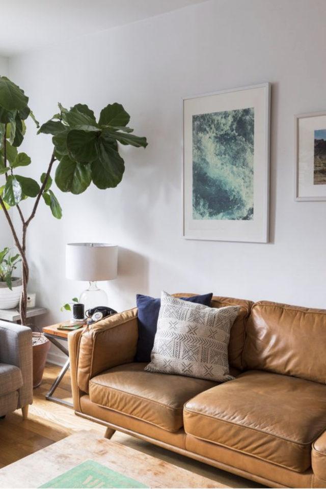 salon canape cuir vintage exemple couleur camel cognac figuier mur blanc